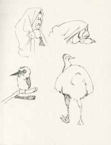 Various Animal Studies