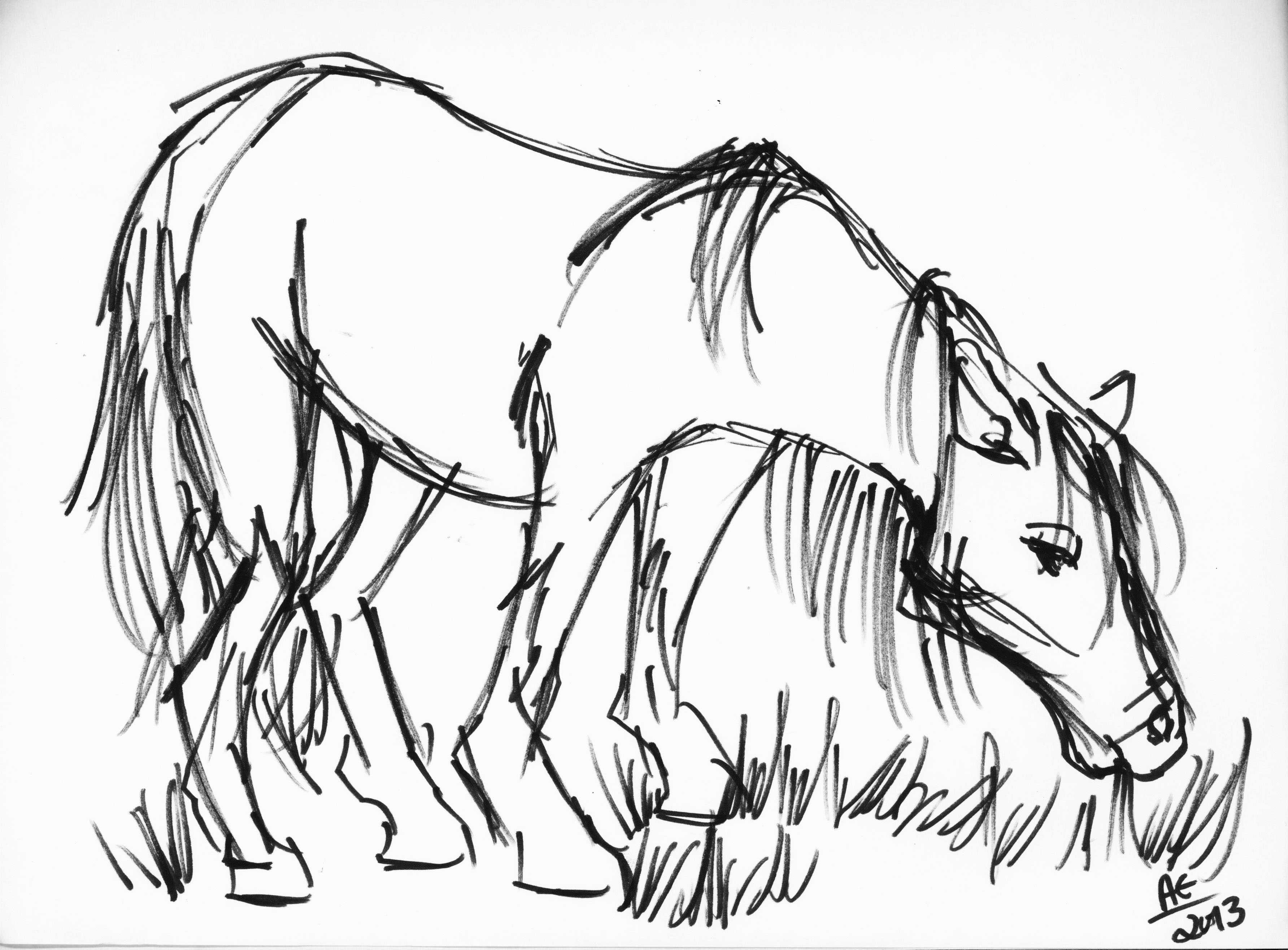 Simple Line Drawings Of Farm Animals : Animal drawing angela entzminger