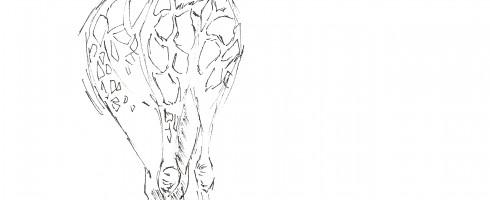 Cute giraffe posing for the drawing pad.