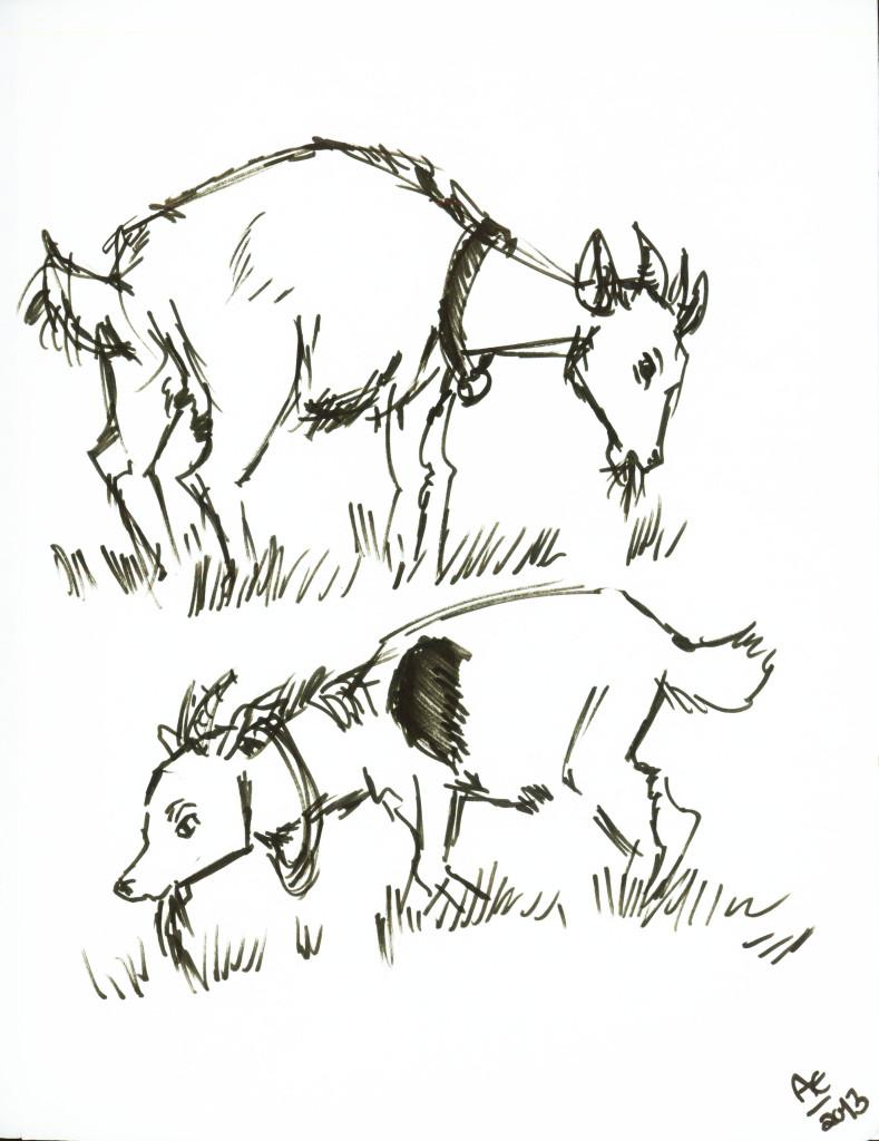 2 Goats