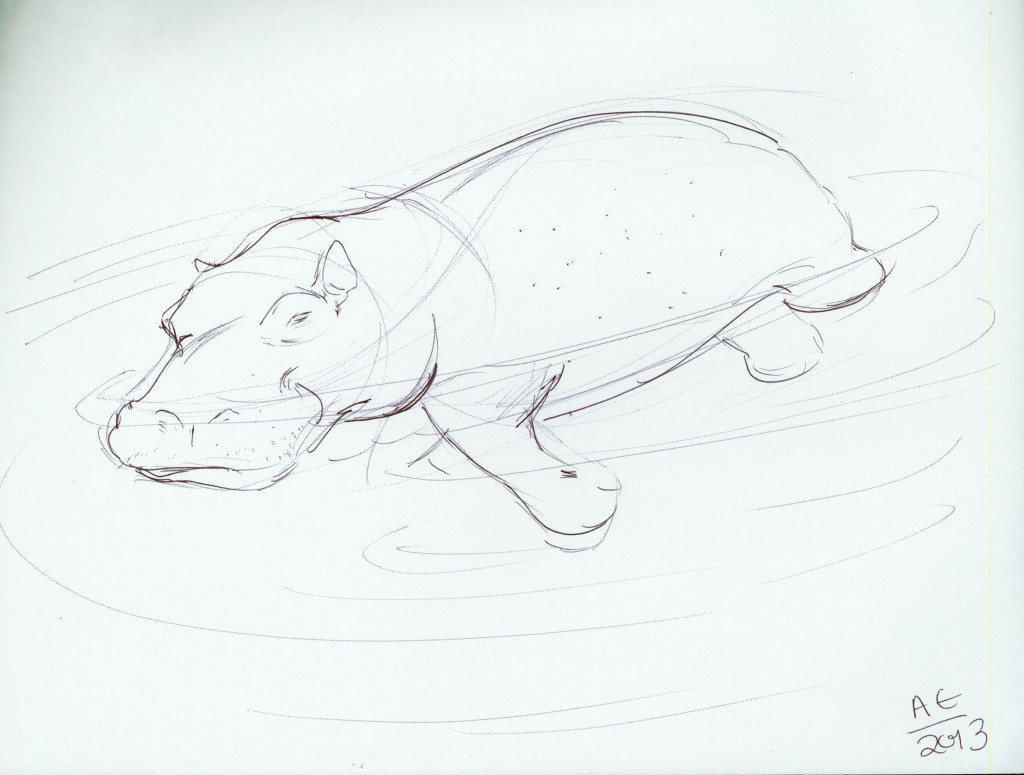 Hippo taking a swim